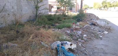 Tiradero. Habitantes de la colonia Eduardo Guerra denuncian que en la banqueta localizada en la calle P y avenida Cuarta, se arroja todo tipo de basura y desechos, lo cual obstruye el paso de los peatones.