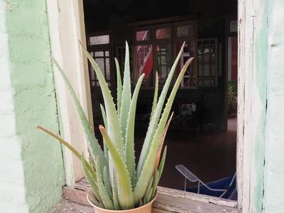 La Casona Abasolo de Torreón
