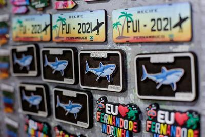 Turistas buscan los ataques de tiburones en playa brasileña