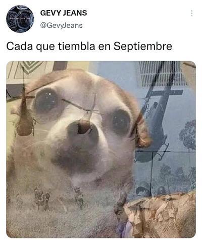 Llegan los memes para 'calmar' el susto por el sismo que sacudió a la CDMX