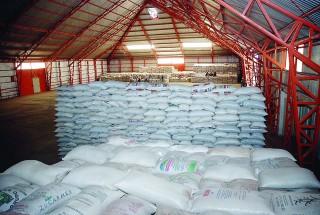 Exportará Durango frijol negro a Brasil