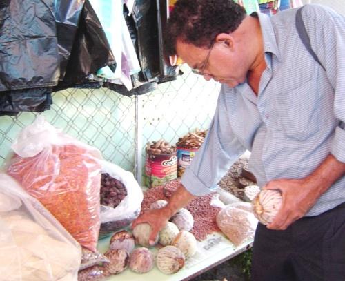 Fruta prehispánica, remedio contra cáncer