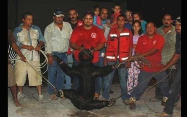 RUBIA ATADA Y VIOLADA POR UN SECUESTRADOR