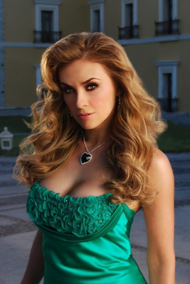 Niegan que Aracely Arámbula vaya a aparecer en Playboy