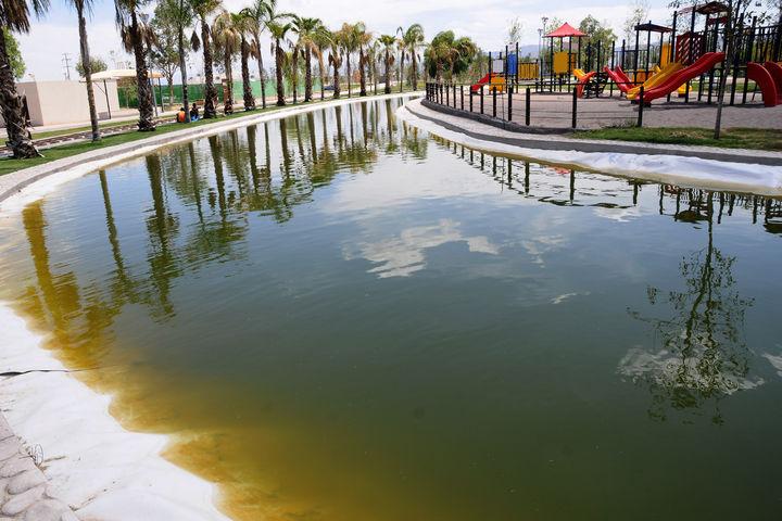 Vaciarán el agua verdosa de los lagos del Bosque Urbano