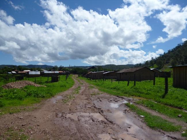 Durango tiene once ejidos irregulares