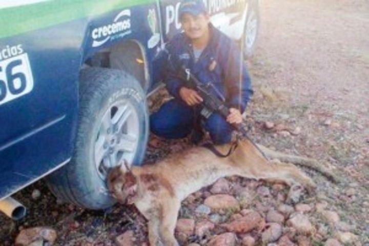 Policía presume muerte de puma en Facebook