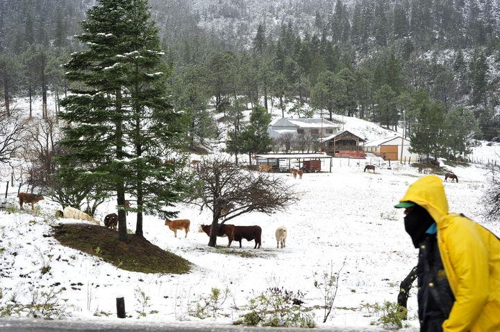 Nevadas amenazan a zonas montañosas