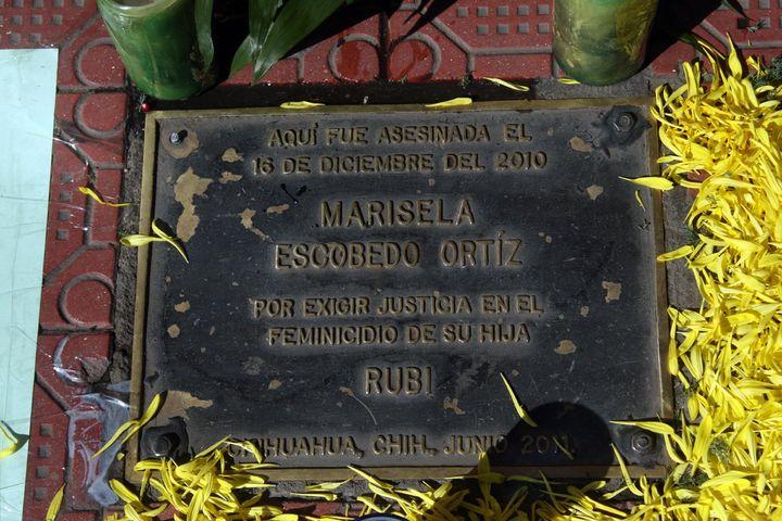 Reabrirán caso de Marisela Escobedo