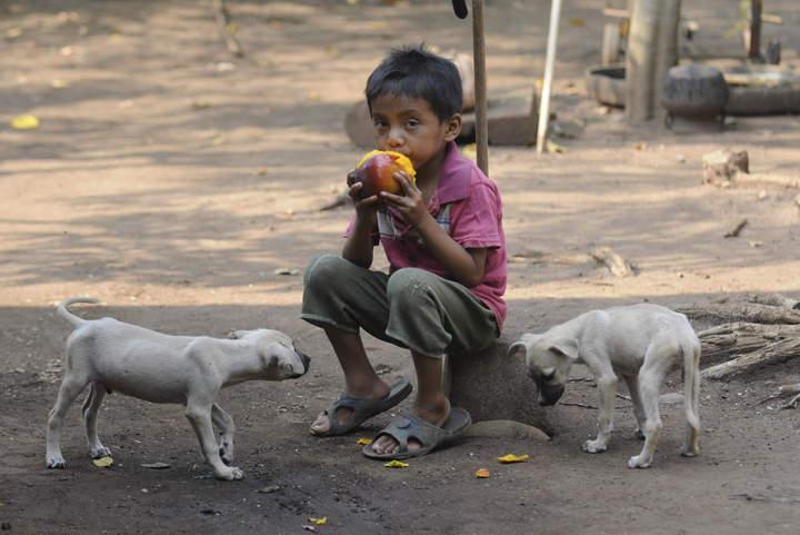 Roban por hambre y necesidad
