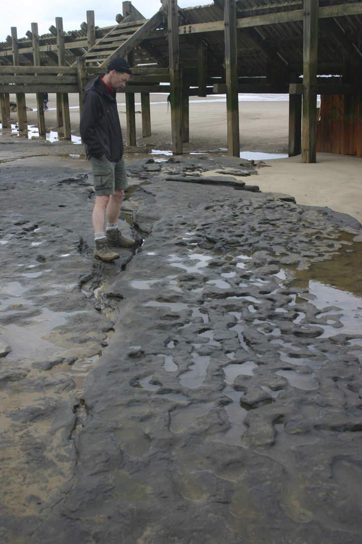 Hallan huellas humanas de hace 800 mil años