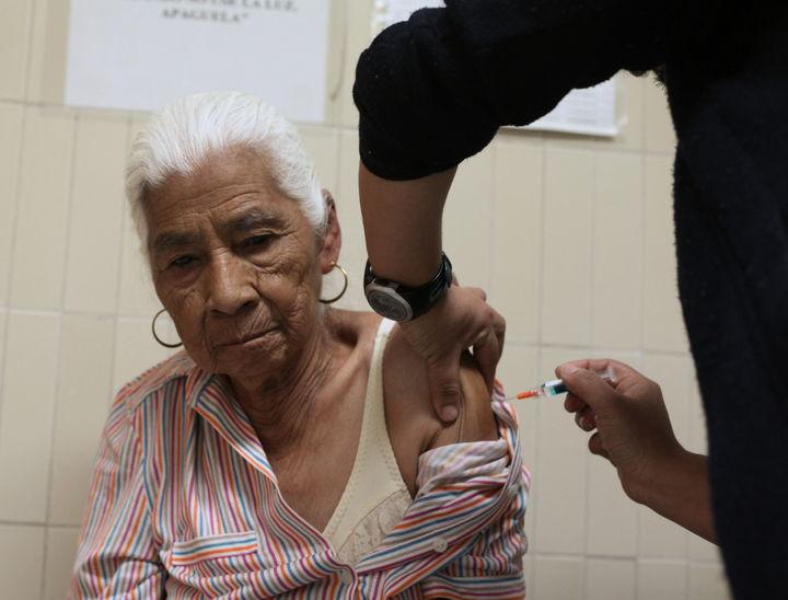 Van 505 muertes por influenza