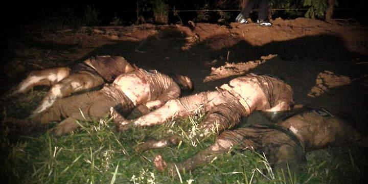 Suman 31 cuerpos en fosa clandestina en Veracruz