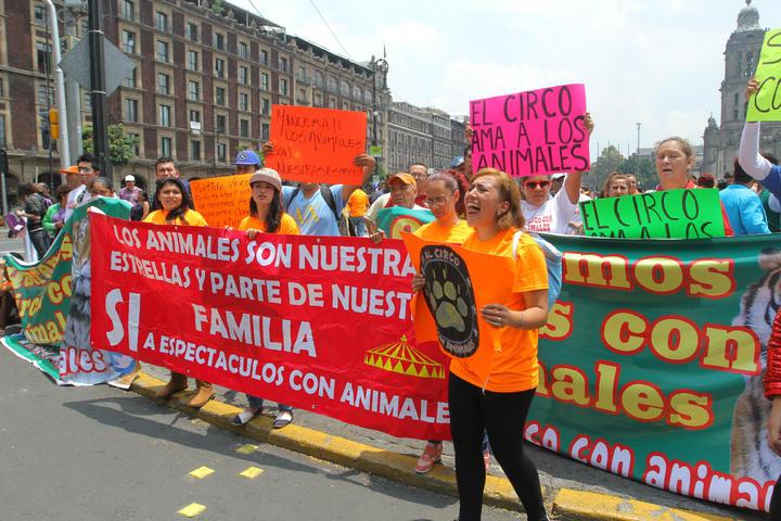 Cirqueros buscan que GDF vete ley que prohíbe animales