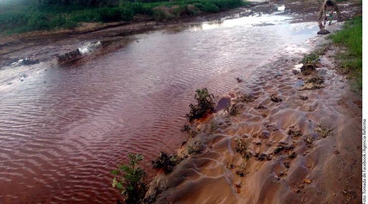 Persisten metales en el río Sonora