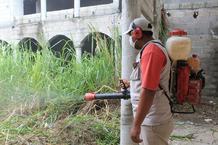 En alerta por dengue