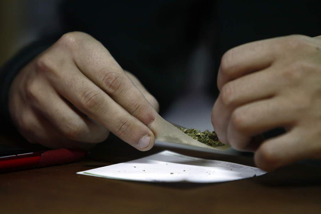 Proponen legalizar uso de marihuana