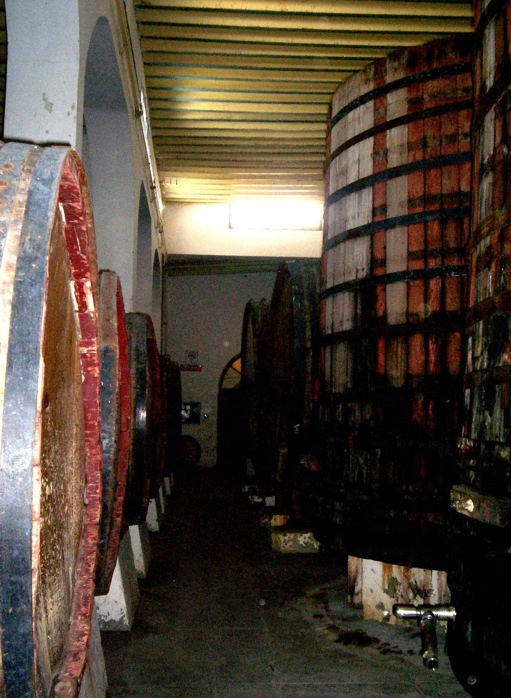 La cultura del vino del País de La Laguna