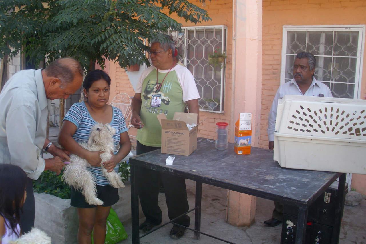 Continúan brigadas de vacunación antirrábica