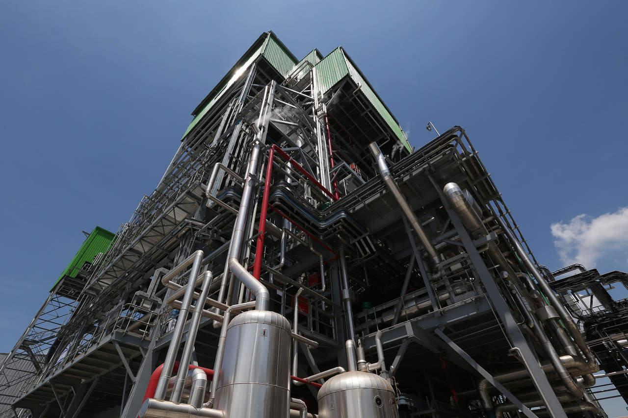 Biomasa, cerca de reemplazar a químicos derivados del petróleo