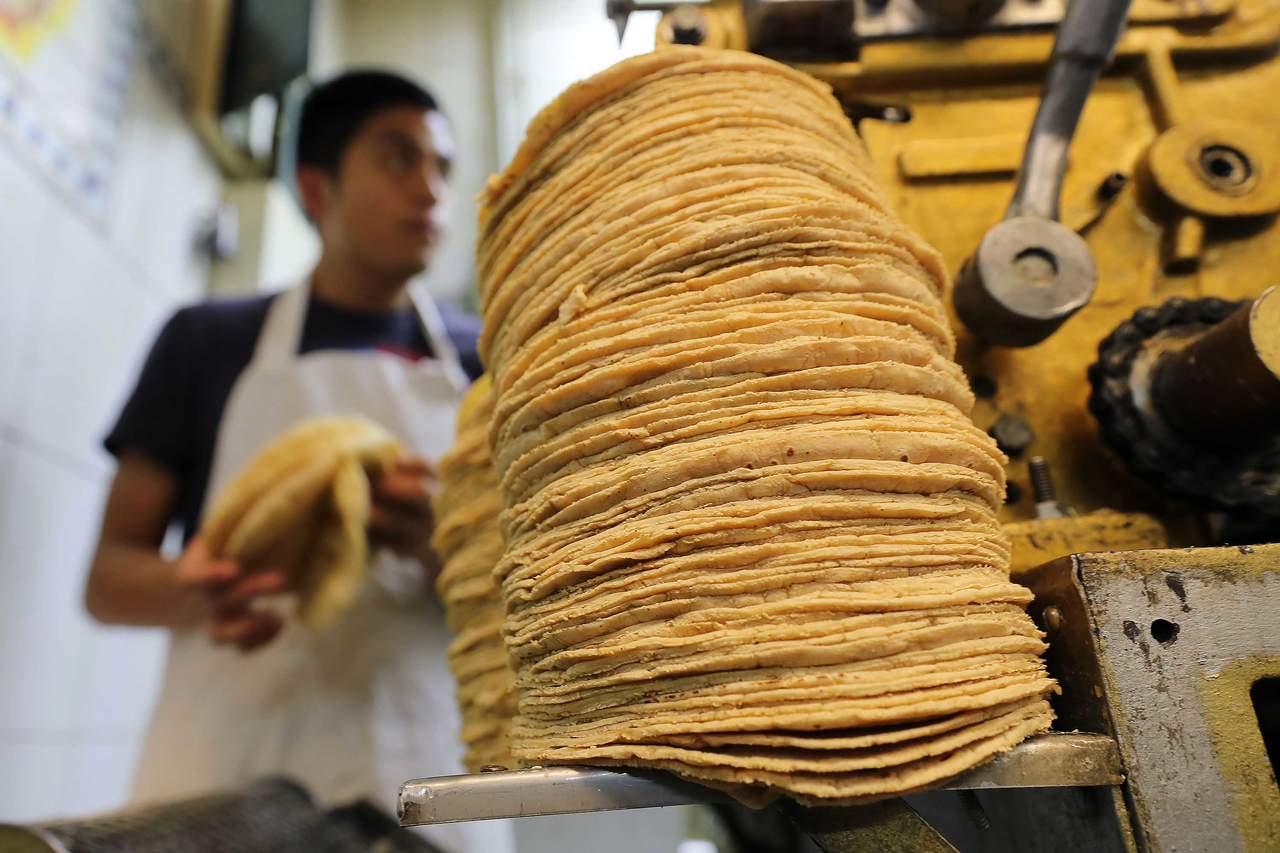Tortilla, el sol de maíz de México