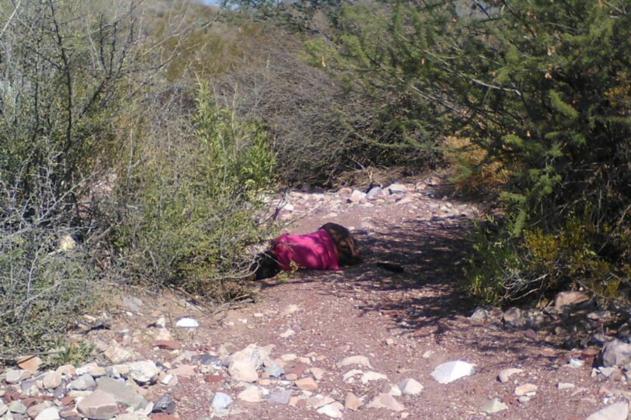 En Coahuila, una mujer asesinada cada 9 días