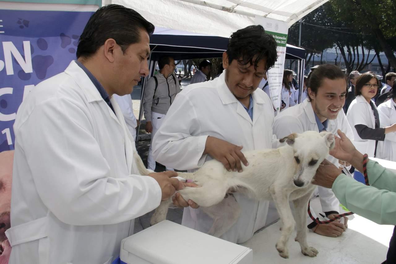 1853: El Día del Veterinario se celebra por primera vez en México