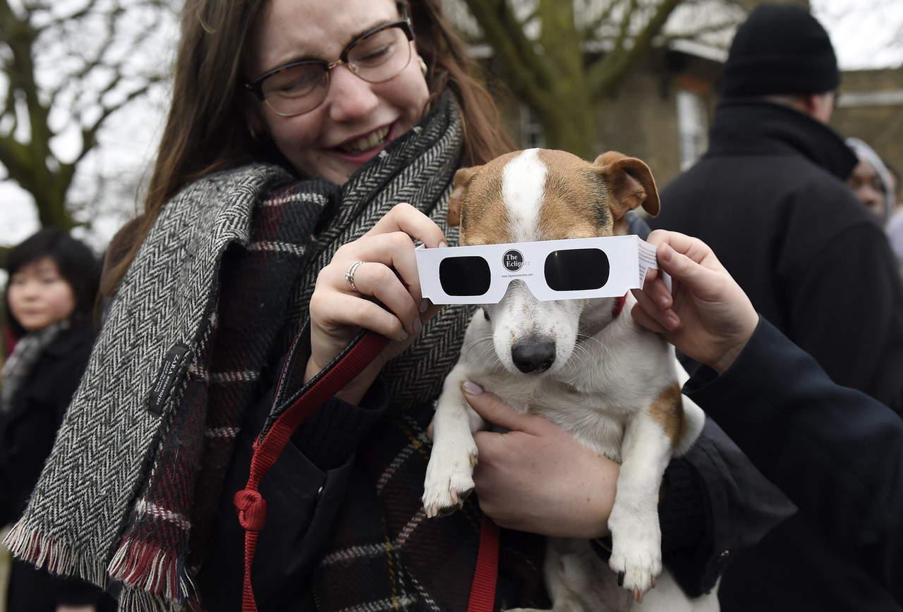 Eclipse también puede afectar visión de las mascotas