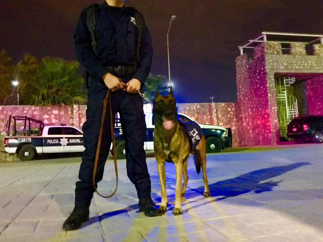 DSPM de Torreón envía equipo para rescate