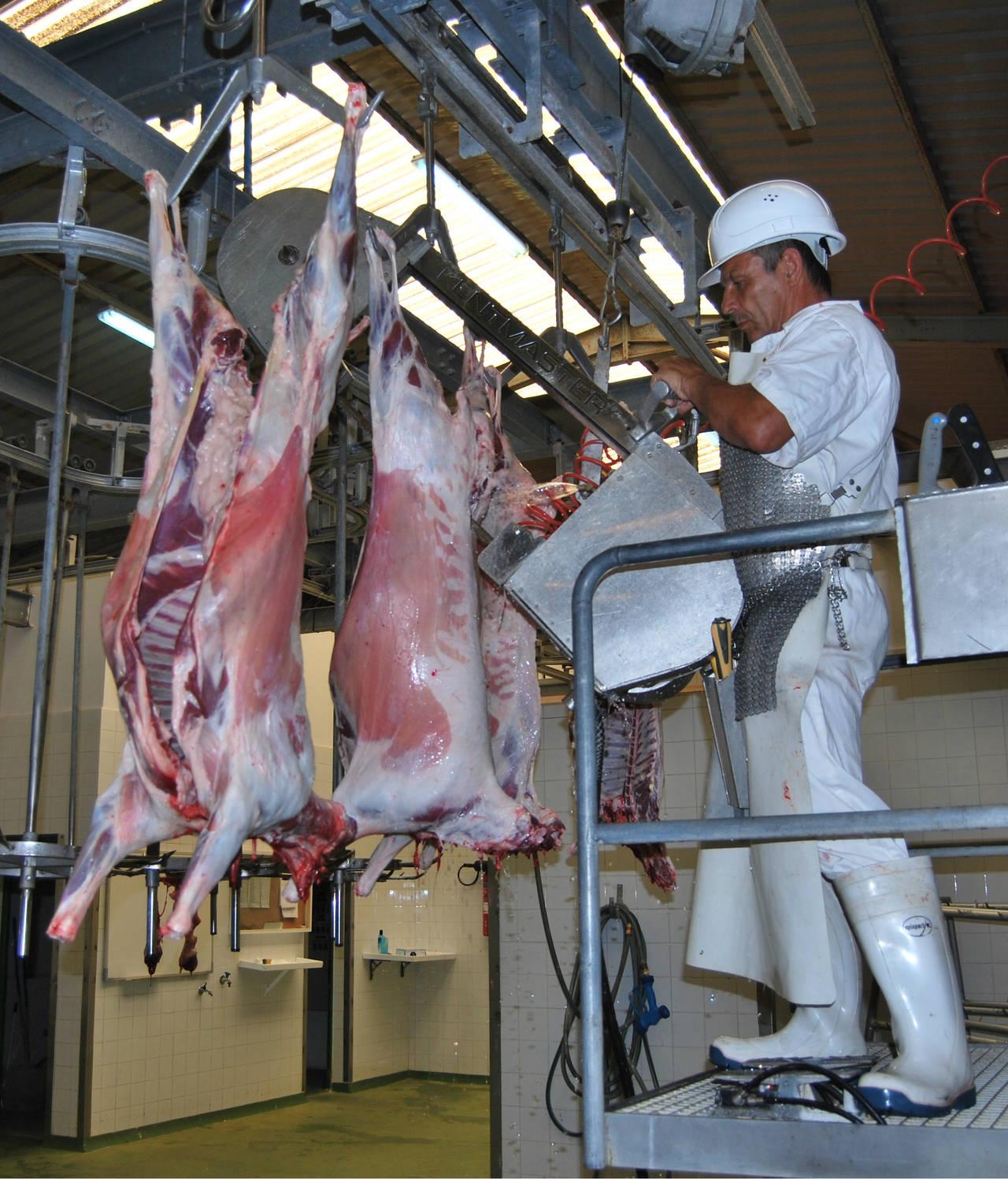 Exportarán carne Lagunera a Emiratos Árabes Unidos