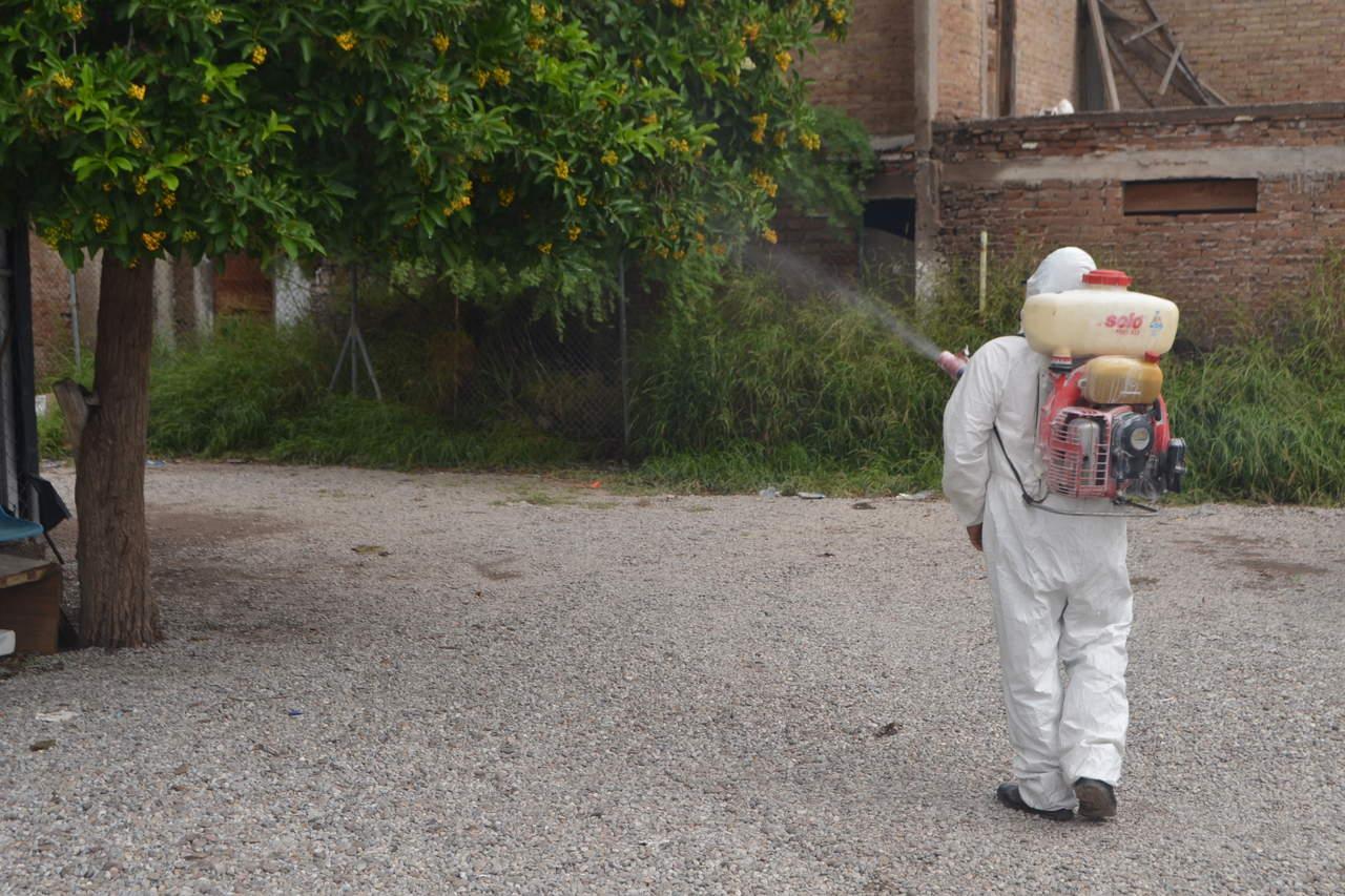 Investigan dos muertes por probable dengue en La Laguna