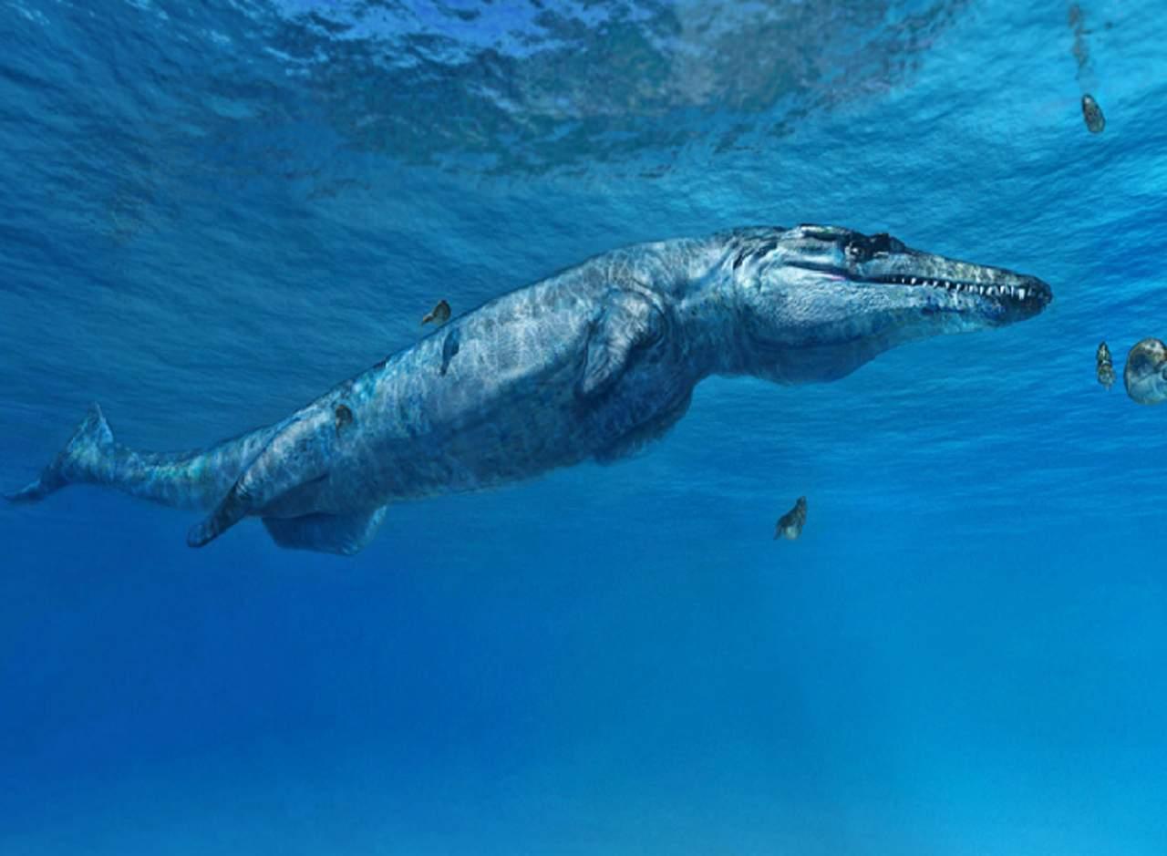 El monstruo de Melksham, depredador de hace 163 millones de años