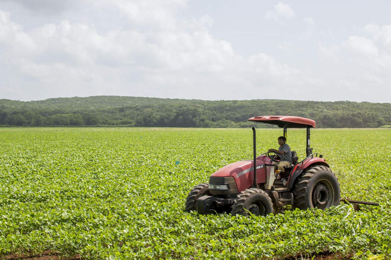 Necesario apoyar a pequeños productores, sostiene Inaes