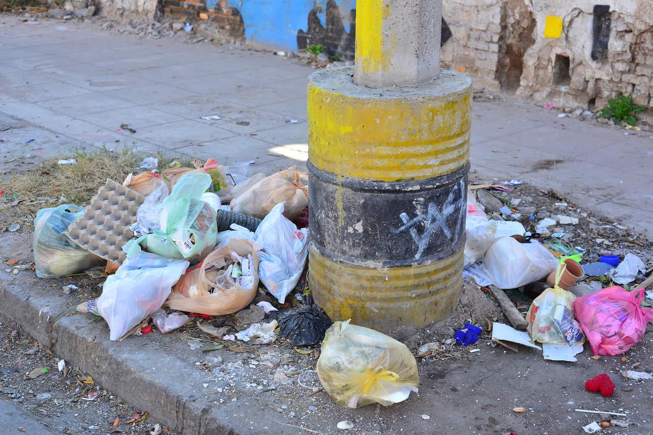 Denuncian basura regada