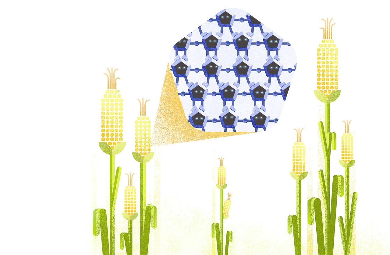 Nanotecnología AL RESCATE