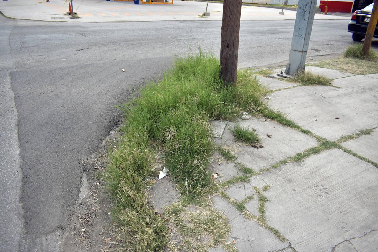 Descuidan Centro de Torreón