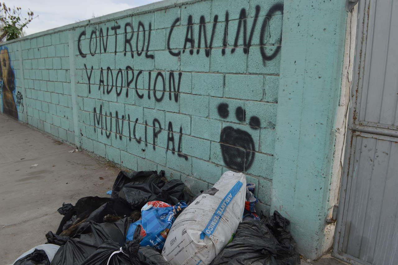 Propaec gira orden para inspección del Centro de Control Canino de Torreón