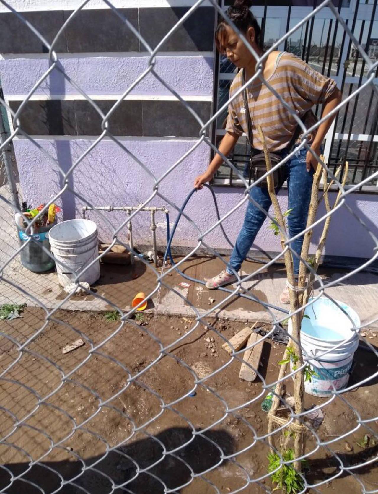 Detectan desperdicio de agua potable
