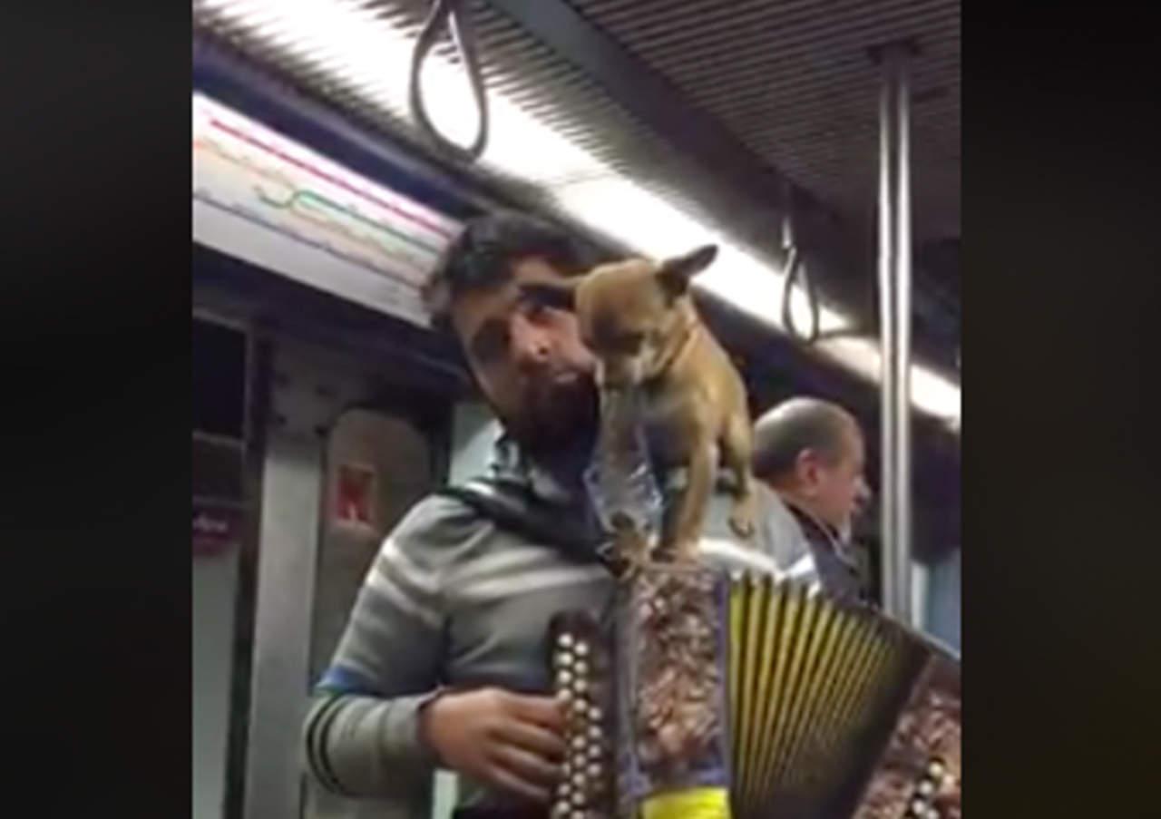 Toca el acordeón con su mascota y se hace viral