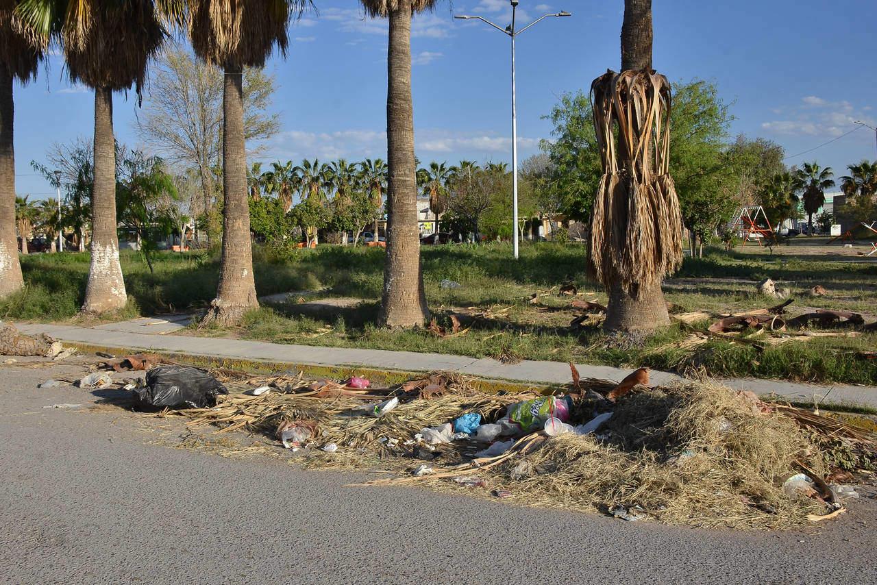 Exigen limpieza en plaza