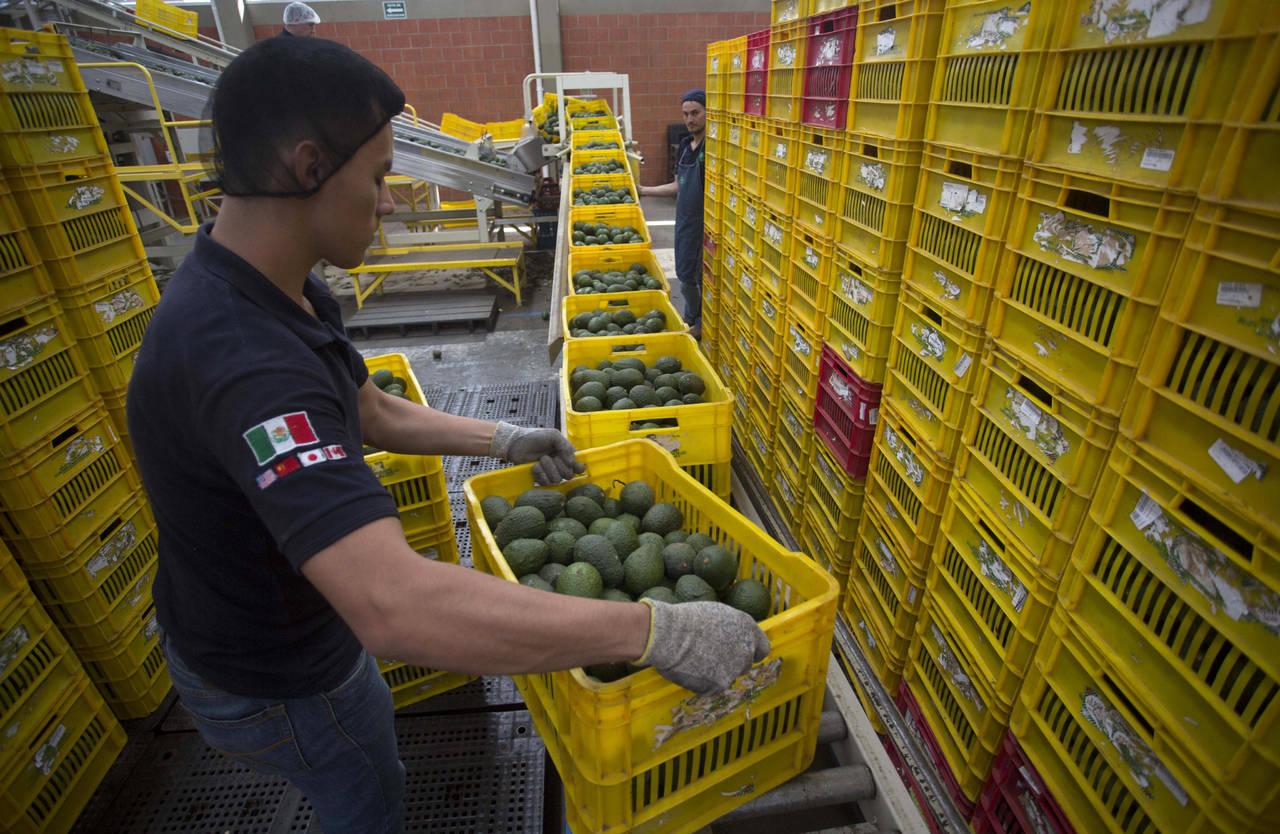Texas atrae mexicanos para impulsar economía