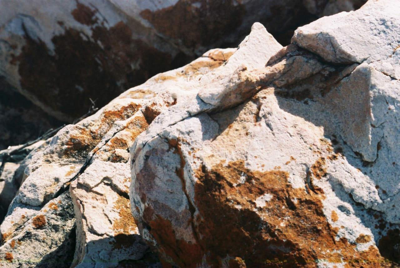 Microbios son esenciales en liberación de carbono en rocas