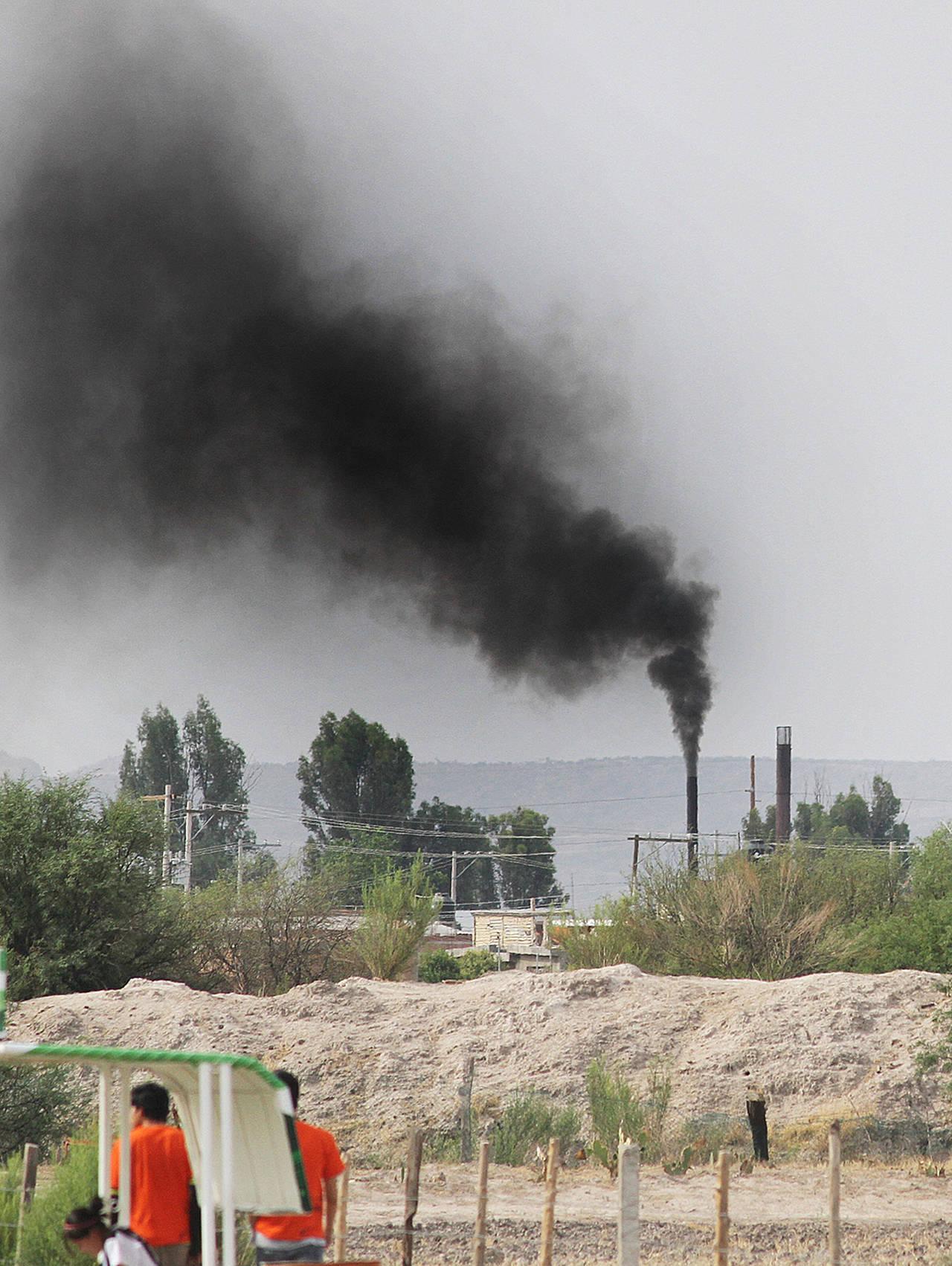 Empresas buscan certificación ambiental
