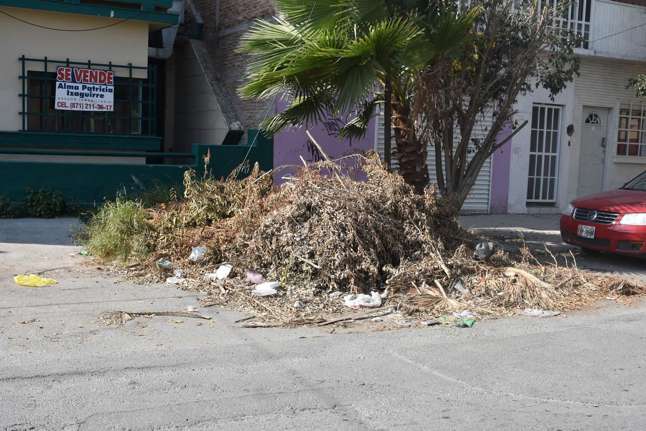 Vía pública como basurero