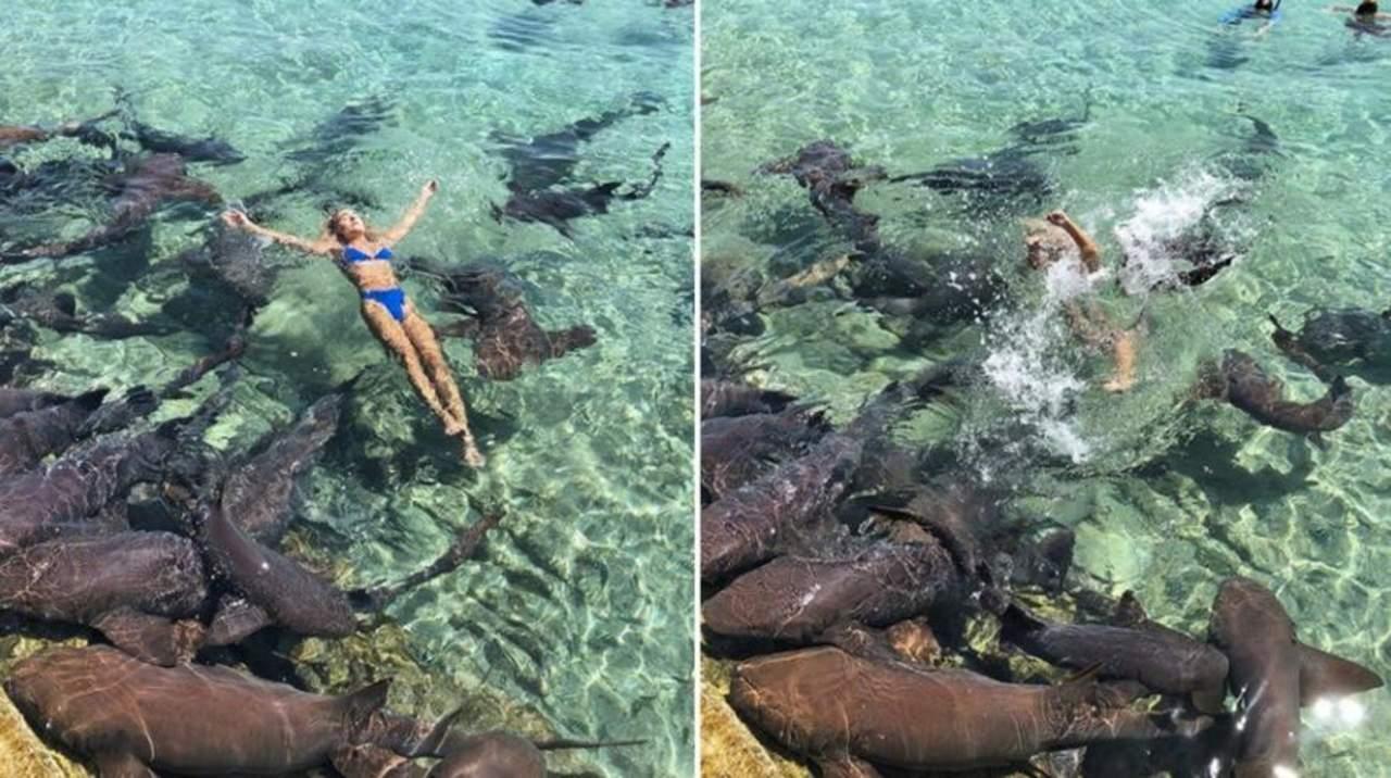 Instagramer es atacada por tiburón durante sesión fotográfica