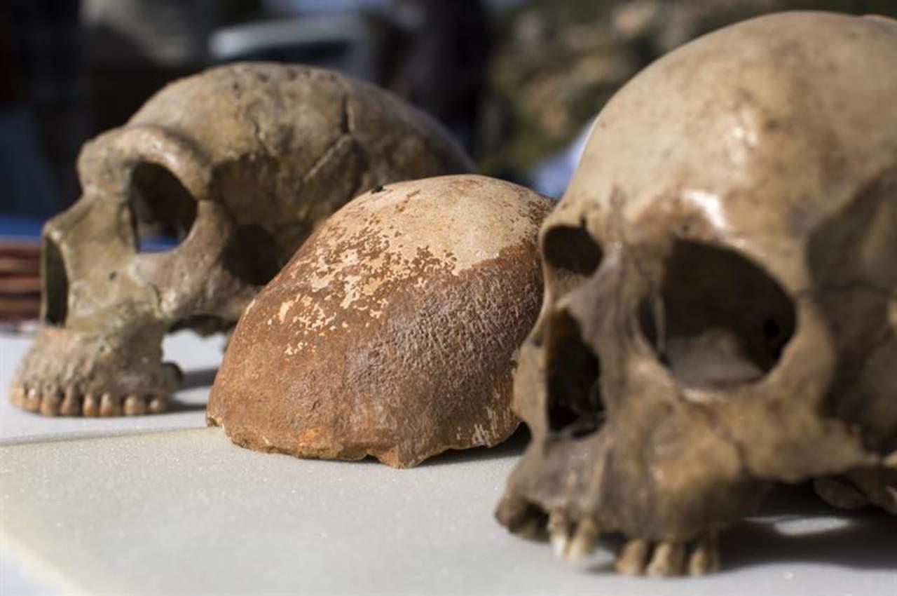 Humanos evolucionaron en poblaciones dispersas y aisladas en África