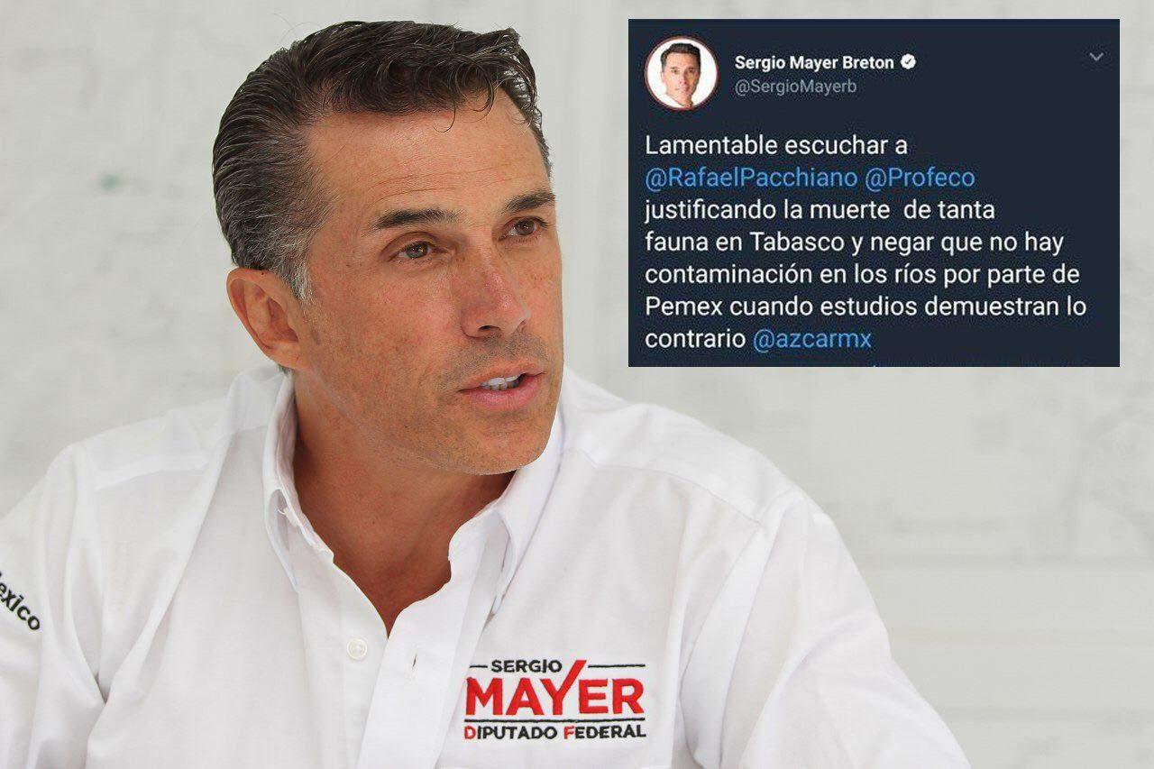 Sergio Mayer desata críticas por confundir Profeco con Profepa