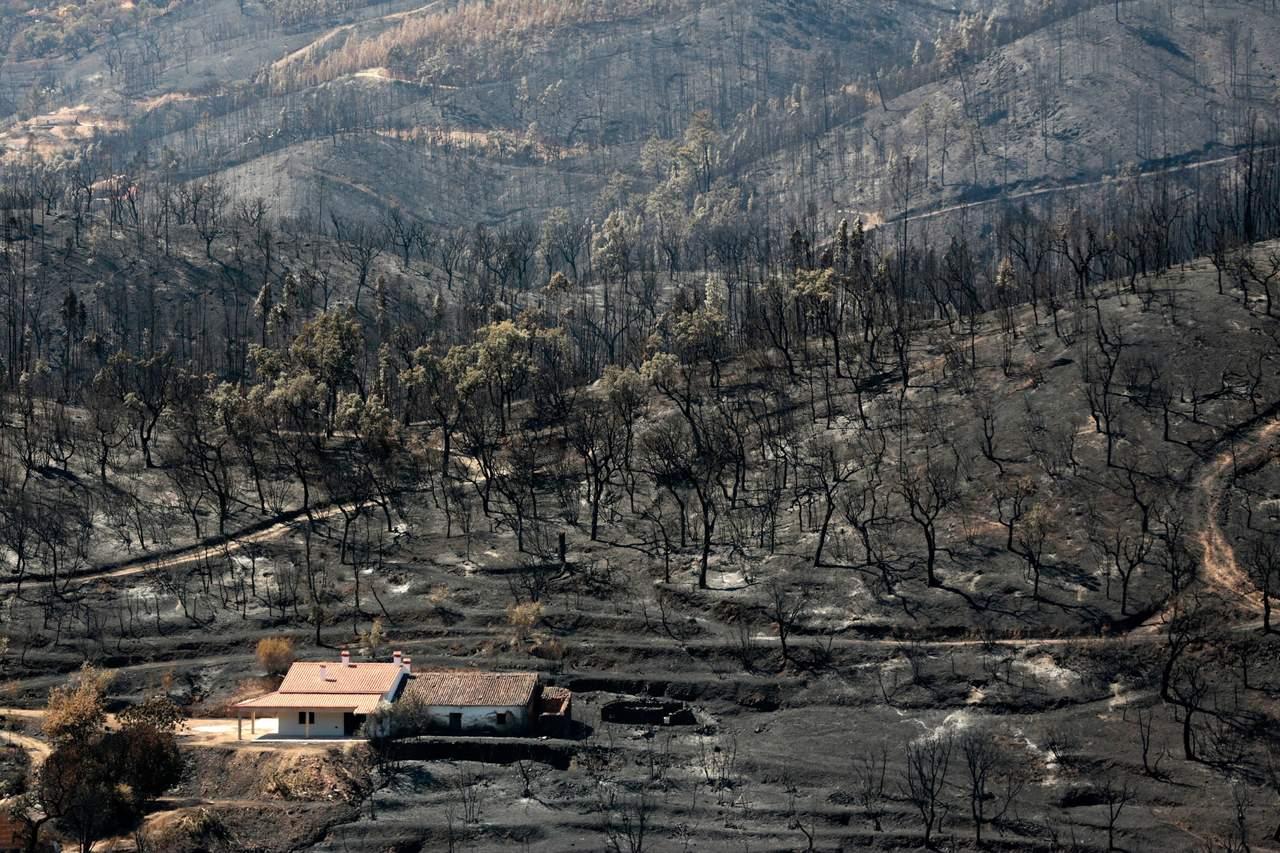 Tras una semana, controlan incendio en Portugal
