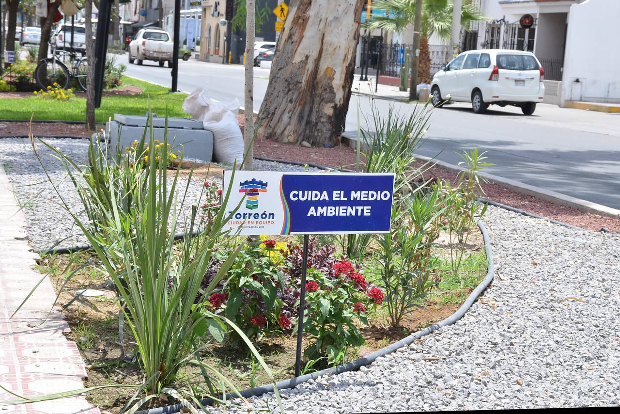 De muestra, área de ornamento en Colón