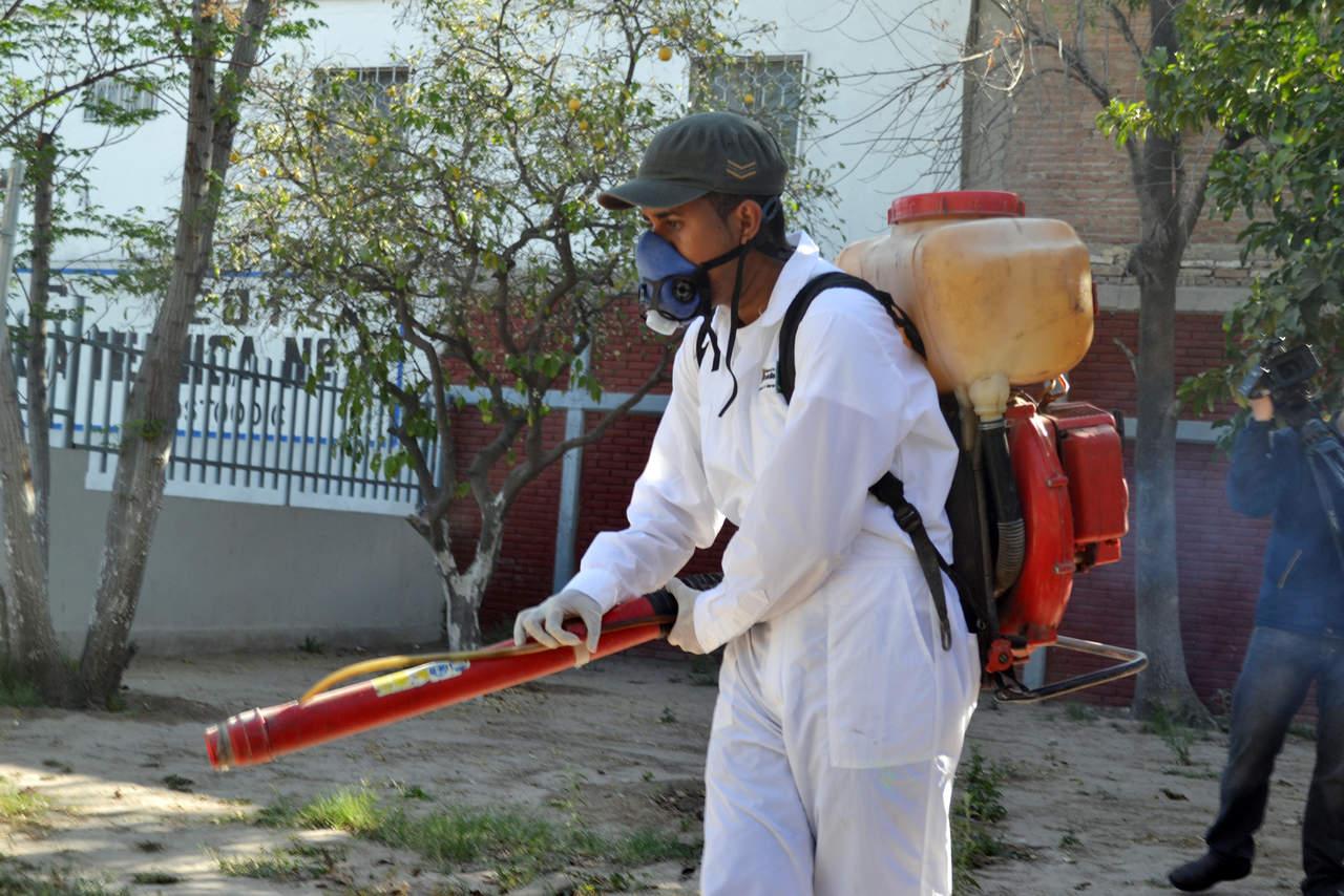 Aumentan acciones contra mosquitos
